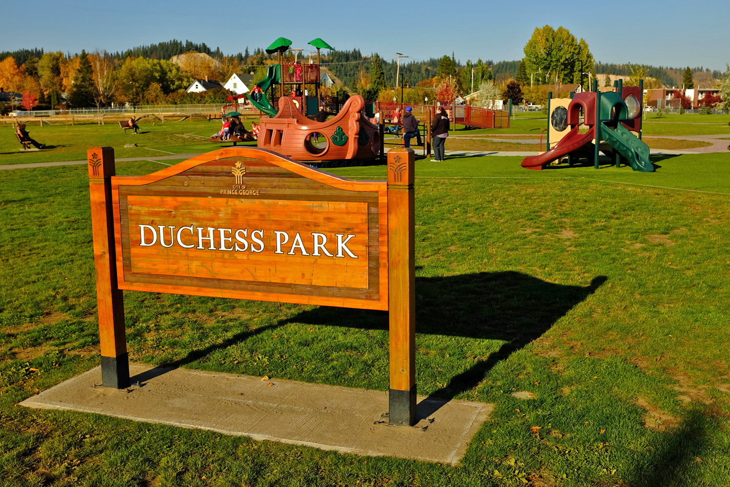 Duchess Park Playground to get accessibility upgrade